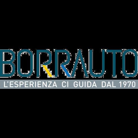 Borrauto